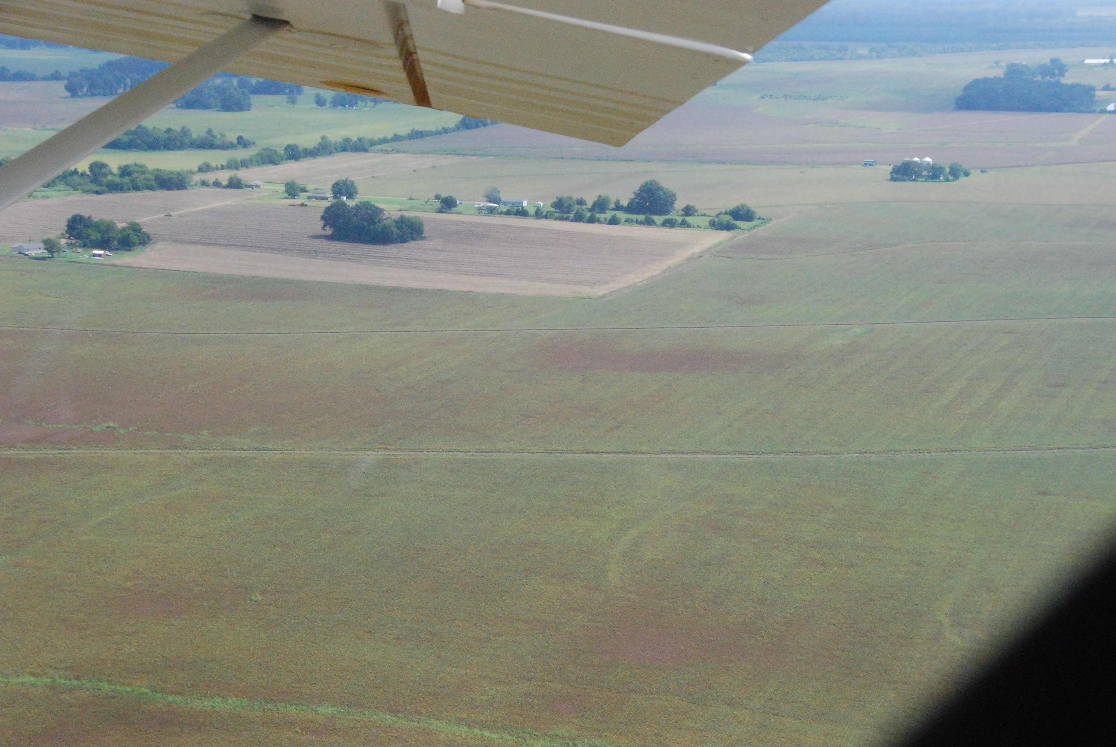 Aerial view of soybean field with patches of soybean rust.